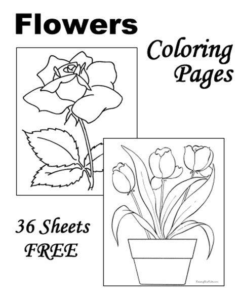 coloring pages of flowers with names flower coloring pages