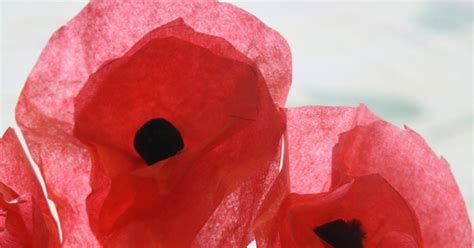 How To Make Tissue Paper Poppies - how the sun poppies