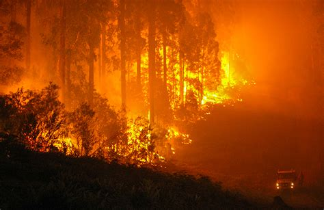Fireplace Nsw by Riparian Zones Are Fuses For Facts And Myths About Bushfires And Climate Change
