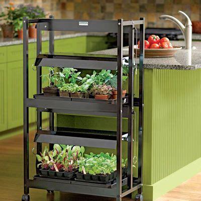 compact  tier sunlite garden  images indoor grow