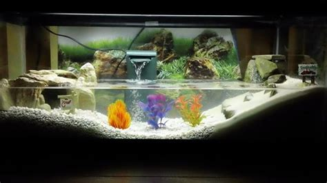 aquarium design sydney 25 best ideas about aquarium design on pinterest