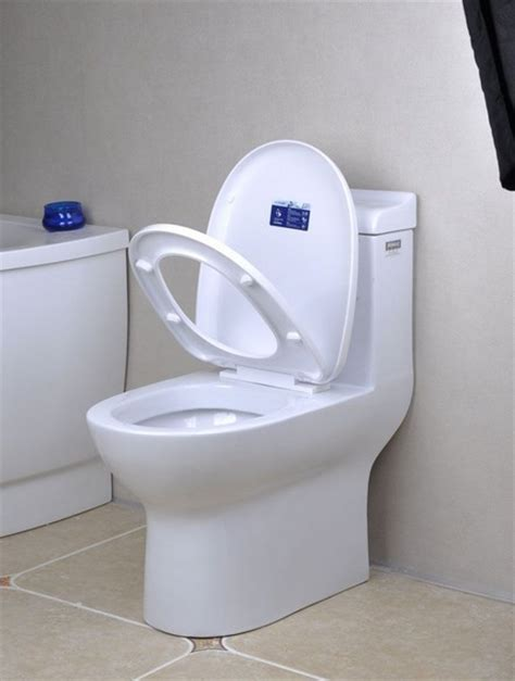 What Are Water Closets by Siphonic Water Closet One Water Closet Siphonic Closestool