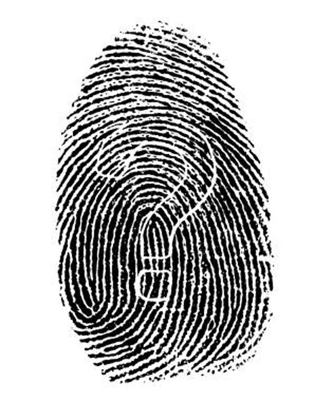 Fingerprint Background Check Florida Finger Printing Florida Digital Live Scan Fingerprinting And Photo Services
