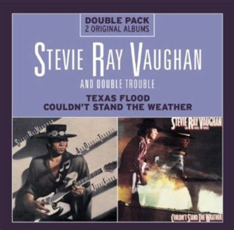 7 Books I Couldnt Stand by Stevie Vaughan Trouble Flood Couldn T