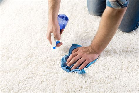 upholstery cleaning brooklyn ny carpet carpet cleaning brooklyn carpet cleaners
