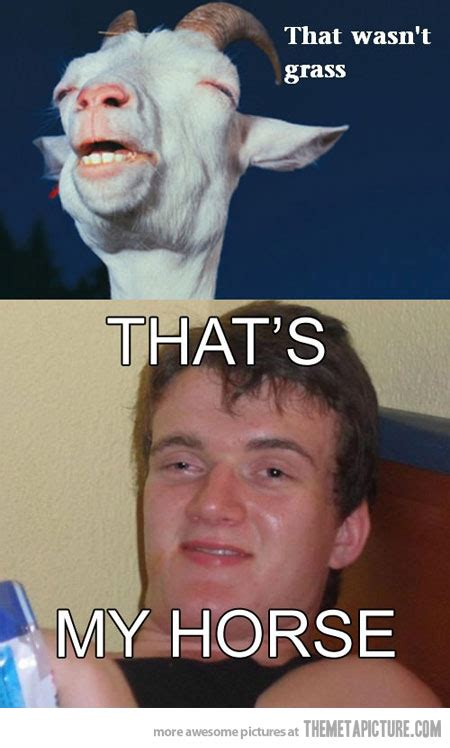 High Memes - high memes funny image memes at relatably com