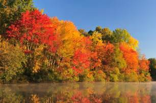 what are fall colors 5 top ways to enjoy fall foliage of the bernerhof