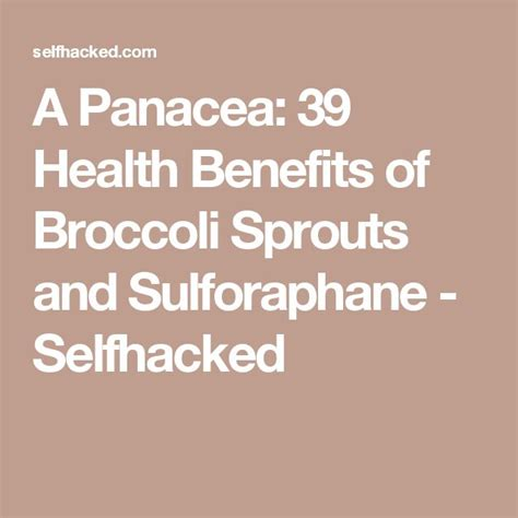 Broccoli Sprouts Helath Benefits Detox by Best 25 Broccoli Sprouts Ideas On