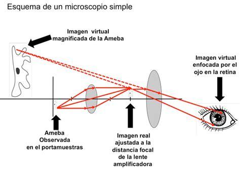 imagenes reales y virtuales en un microscopio optico ojos para lo infinitesimal ii la doma de la luz principia