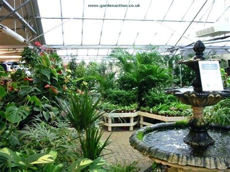 burford garden center indoor plants burford garden centre
