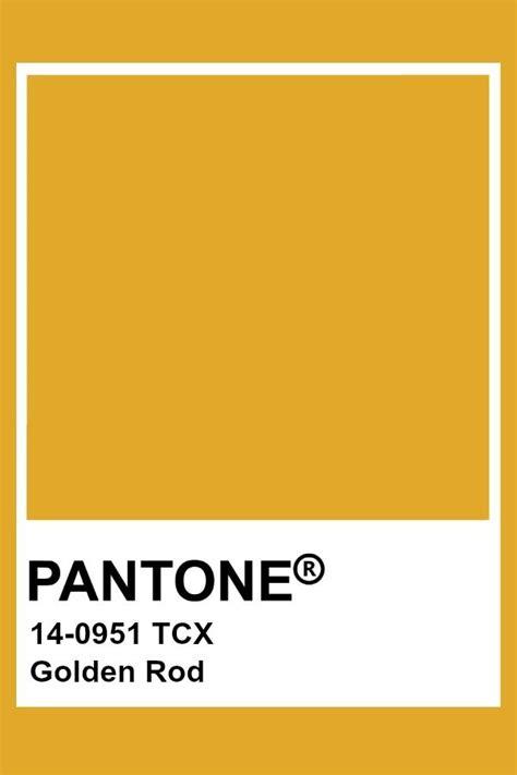 pin  color wheel     world ochre