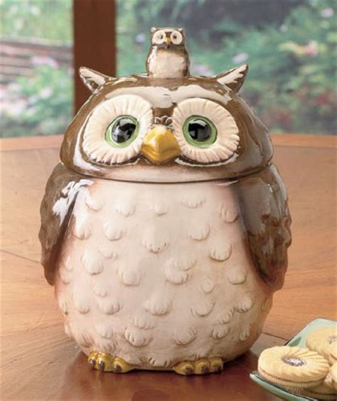 Cute Kitchen Canisters Cool Kitchen Stuff Cute Ceramic Owl Cookie Jars For Your