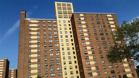 tilden houses 17 best images about brownsville on my mind on pinterest