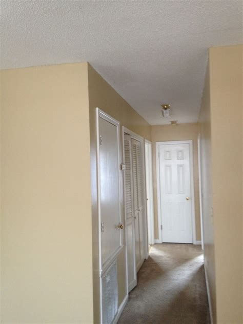 1 Bedroom Apartments In Starkville Ms University Towers Rentals Starkville Ms Apartments Com