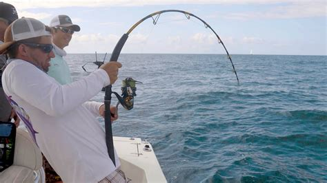 commercial fishing boats near me defeated by giant amberjacks ft lakeforkguy