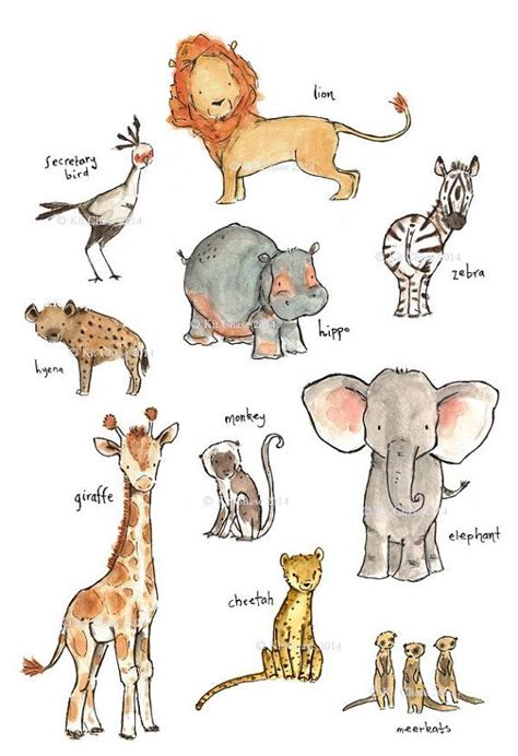 1431702064 on safari a young explorer s 25 best ideas about baby animal drawings on pinterest