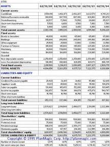 Sole Proprietorship Business Plan Template by Business Plan Projected Balance Sheet