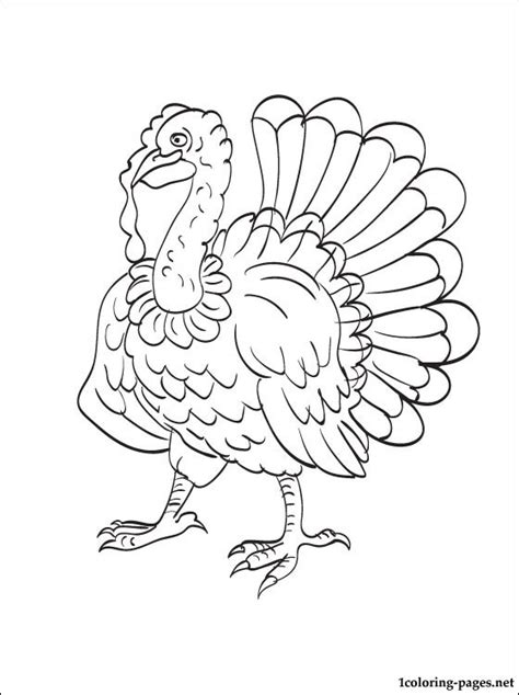 printable turkey clothes free coloring pages of turkey clothing