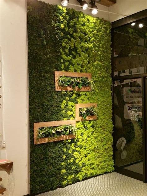 Interior Living Wall Plants Best 25 Moss Wall Ideas On Moss Wall