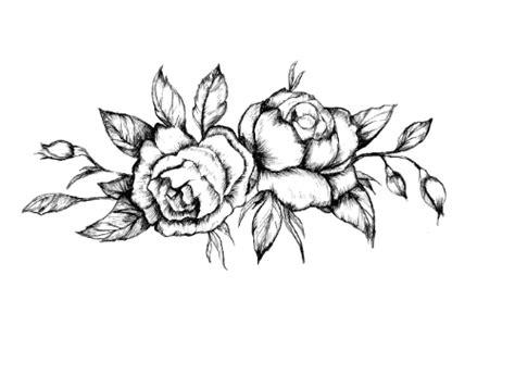 sketchbook transparent background black roses temporary black roses vintage fans