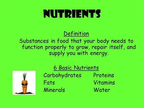 nutzfläche wohnung definition power foods definition 28 images improving metabolism