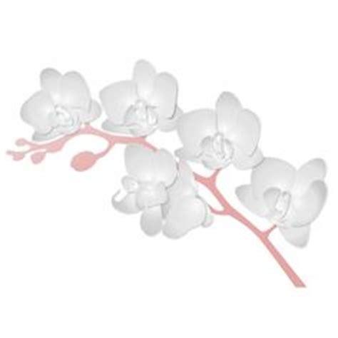 bloemen in afwasmiddel en water fotograferen tekening bloem sketch orchidee tak hand getrokken inkt