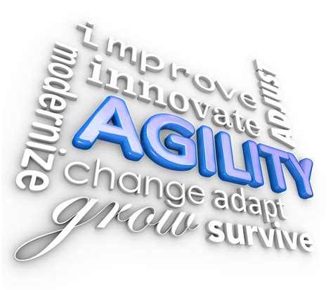 how to your to do agility learning agility revisited can leaders excel without it a j o connor associates