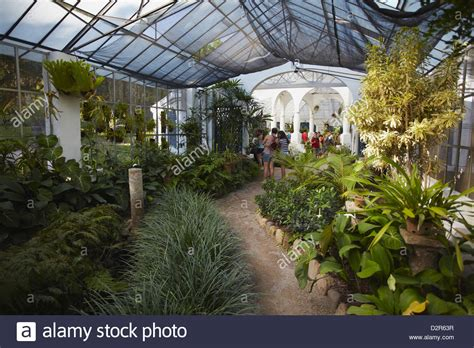 Botanic Garden Mansion Inside Orchid House At Botanical Gardens Jardim Botanico Stock Photo Royalty Free Image