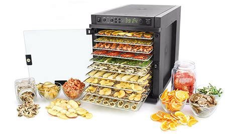 what s the best food dehydrator blend