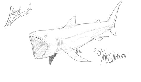 free coloring pages of megamouth shark