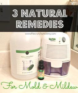 home remedies for bathroom cleaning 15 best ideas about bathroom mold on pinterest cleaning