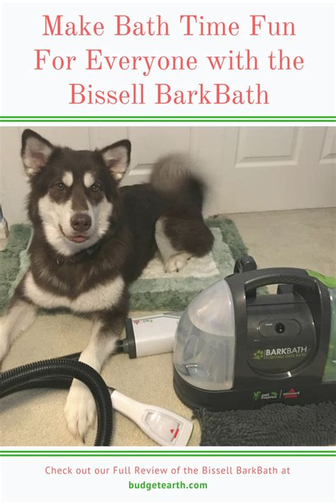 make bathtime fun for your dog make bath time fun for everyone with the bissell barkbath