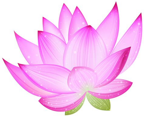 lotus clipart fuschia pencil and in color lotus clipart