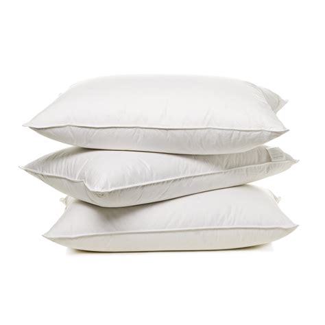Pillows For by In Search Of The Pillow Buckmd