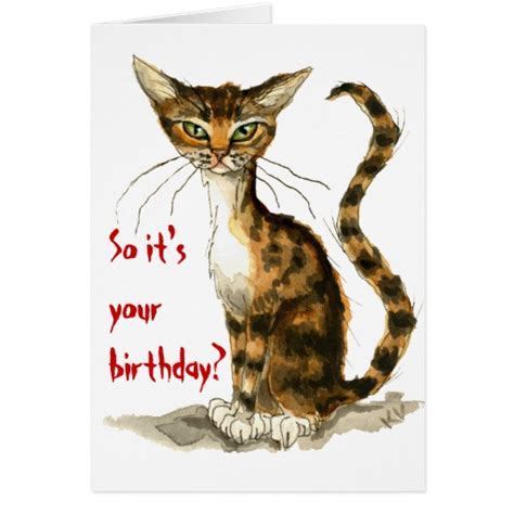 Cat Birthday Card Grumpy Brown Tabby Cat Funny Birthday Card Zazzle