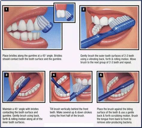 how to a properly how to brush your teeth properly the news dr honeliat ephrem tufer