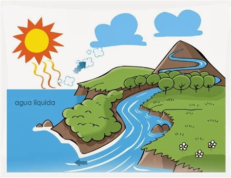 dibujos del ciclo del agua para imprimir dibujos para nios los colores de un sue 241 o ciclo del agua