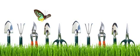 an overview on basic gardening tools