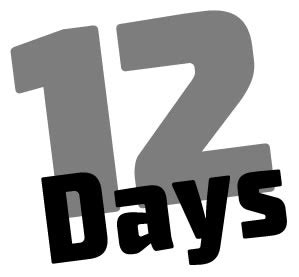 12 days of forever 12 things you can do in the next 12 days that could change