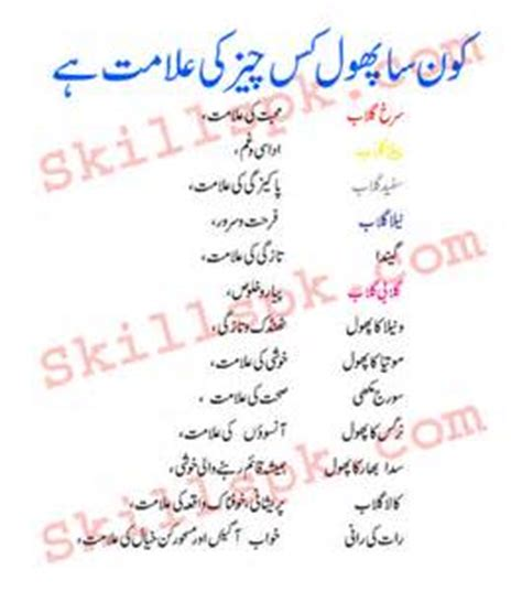 breast barhane ka tariqa in urdu best tips picture 2