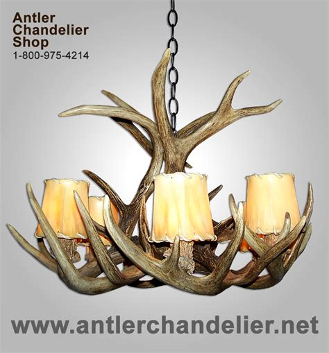 Antler Ls Cheap by Antler Chandelier Net Real Antler Chandeliers Antler