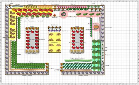 Free Vegetable Garden Layout Garden Plan 2016 Mcinerney