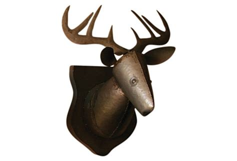 Real Deer Head Wall Mount Pinterest