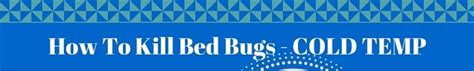 does cold weather kill bed bugs how to kill bed bugs 10 effective methods kill all bed