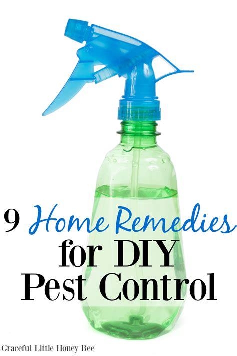 house pest control home pest control diy diy wiki