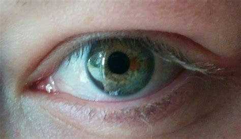 which eye color is dominant are hazel dominant or recessive mccnsulting web