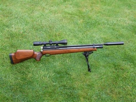 Guess S310 need advice airgun universe