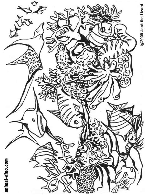 free printable ocean life coloring pages coloring home
