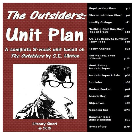 the outsiders by se hinton book of a lifetime a powerful 17 best images about novel ideas on pinterest hunger
