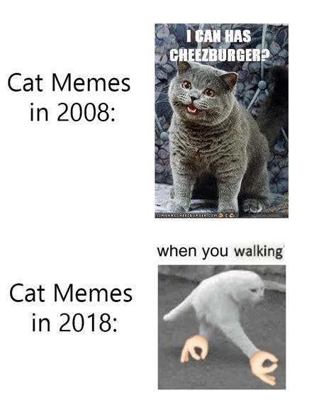 Cat Memes 2018 - the best cat memes memedroid